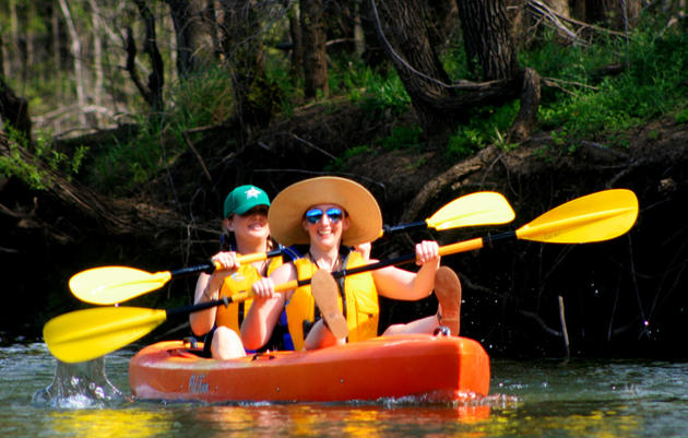 Kayak Eco-Tours