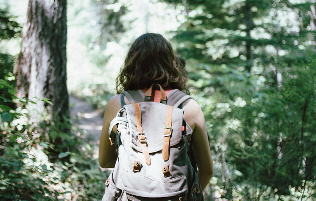 Wild Walks