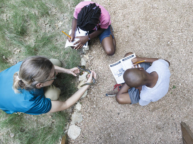 Outreach Programming