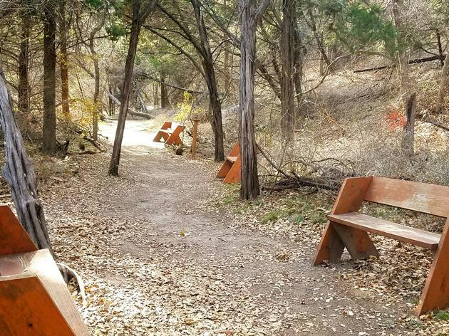 Our Trails